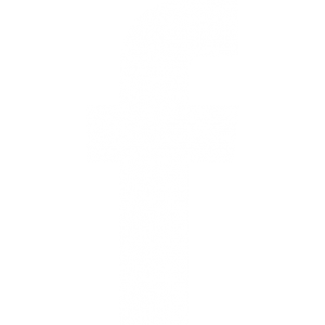 Facebook FAECE